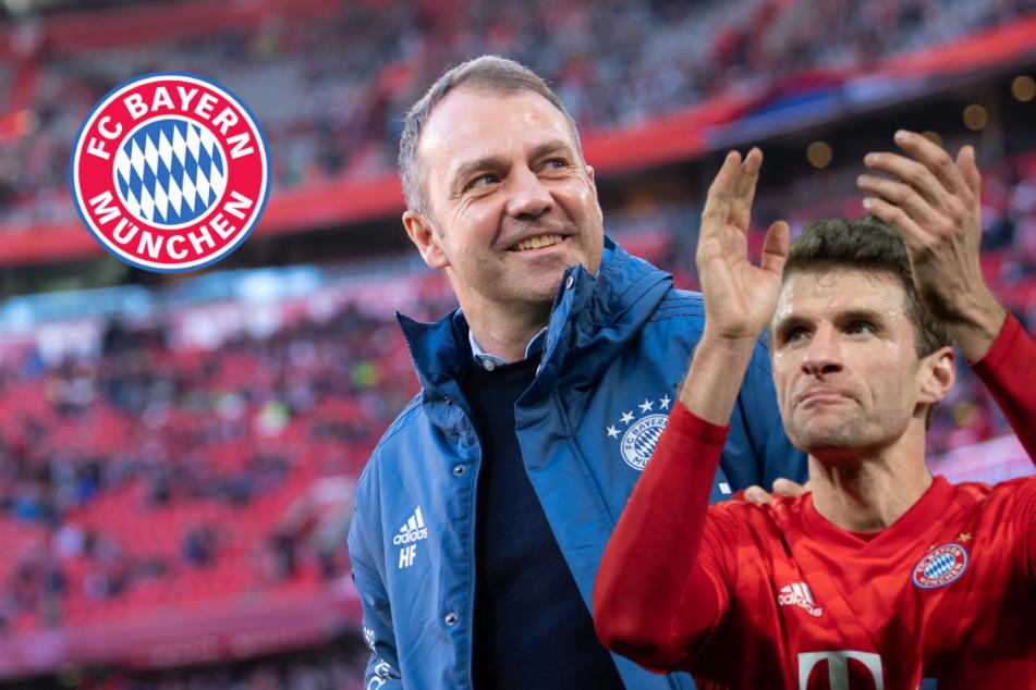 Nach Flick und Müller: Diese Verträge stehen beim FC Bayern noch auf der Kippe