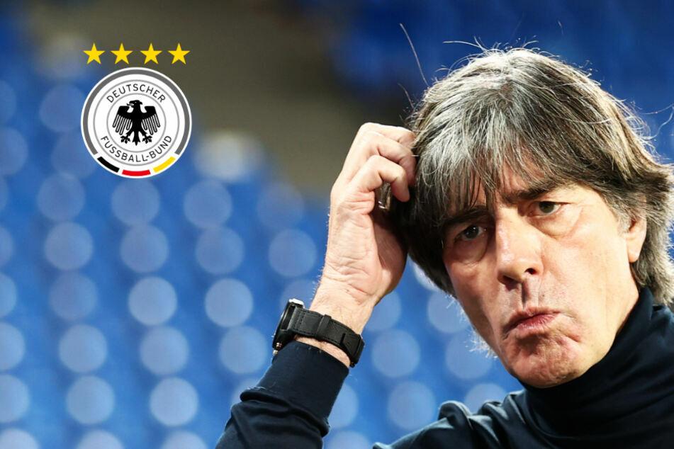 Das denkt Bundestrainer Jogi Löw über ein Comeback von Müller, Hummels oder Boateng