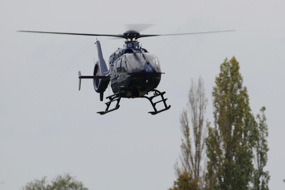 Molotow-Anschlag auf Polizeirevier: Hubschrauber im Einsatz