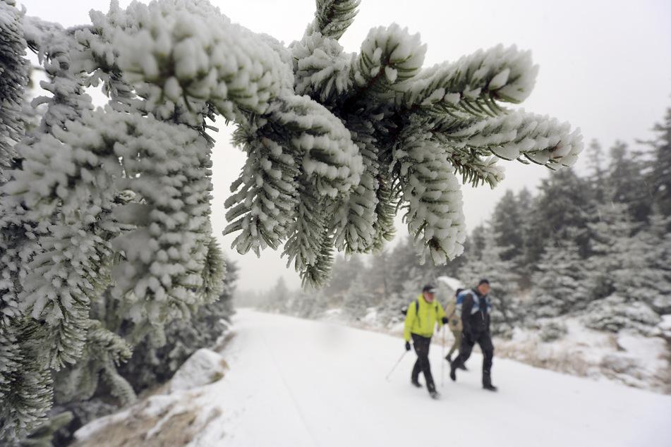 Es hat geschneit! Erste Flocken verwandeln Brocken in Winterwunderland