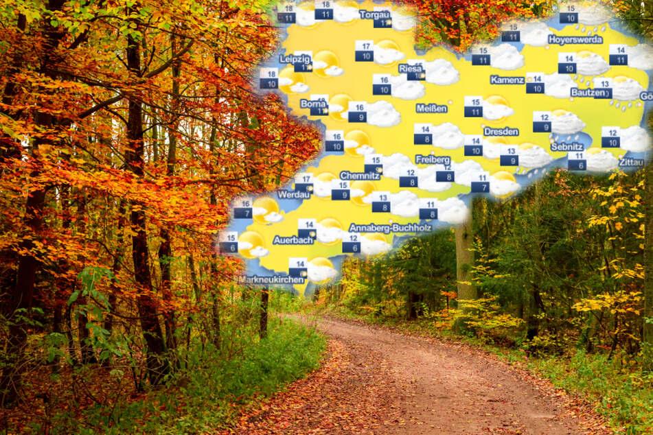 Goldener Herbst oder grauer Himmel und Dauerregen? So wird das Wetter in Sachsen