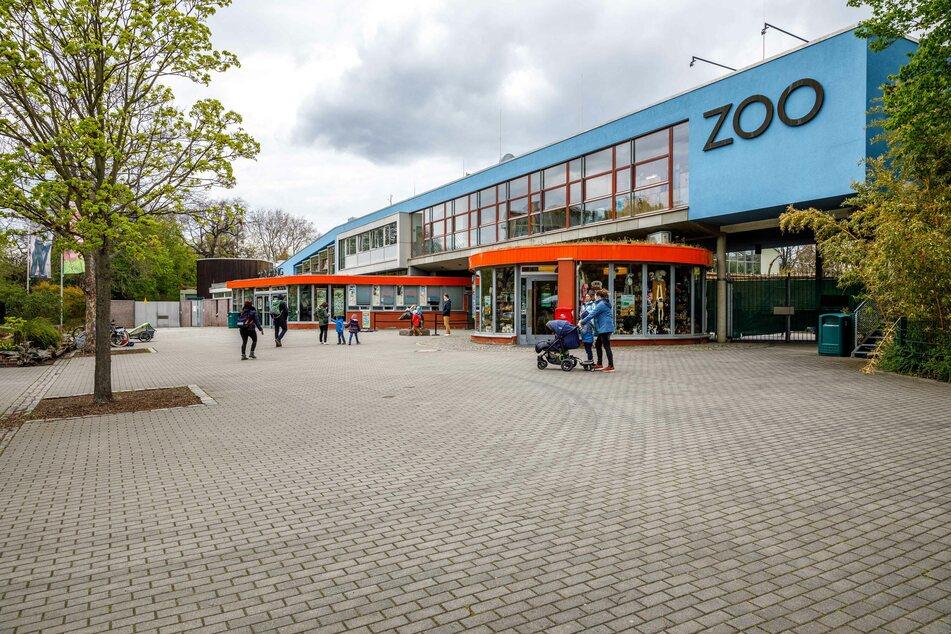 Wer den Zoo besuchen möchte, benötigt einen Negativtest und Online-Termin. Testen kann man sich auch vor Ort auf dem Parkplatz gegenüber.