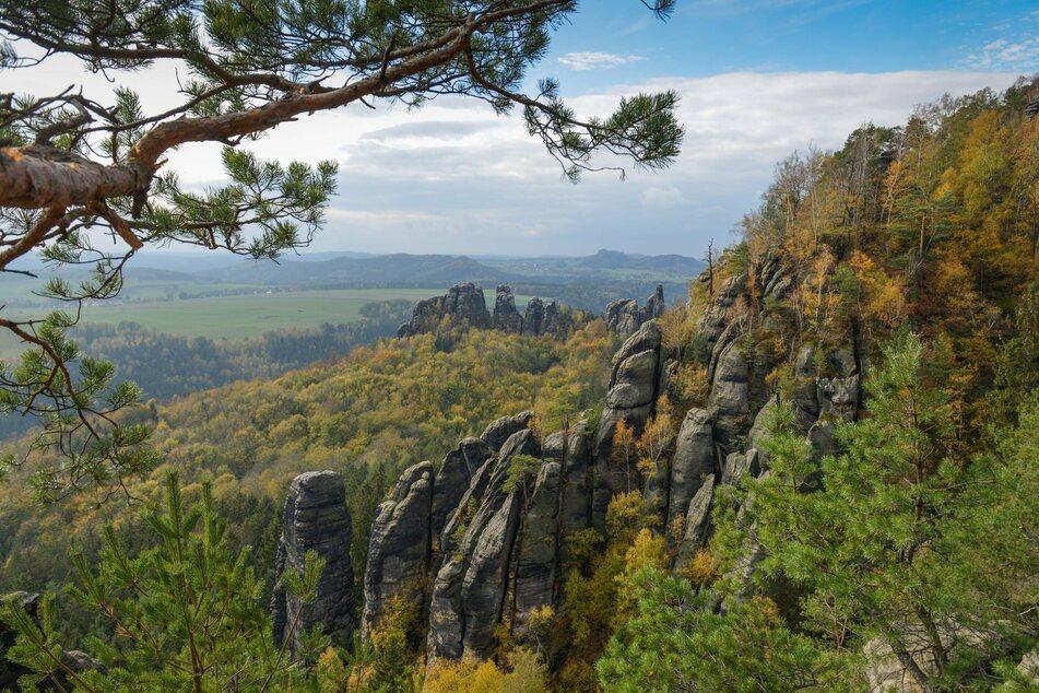 Die Sächsische Schweiz wird bald wieder sehr gut mit der Bahn zu erreichen sein.