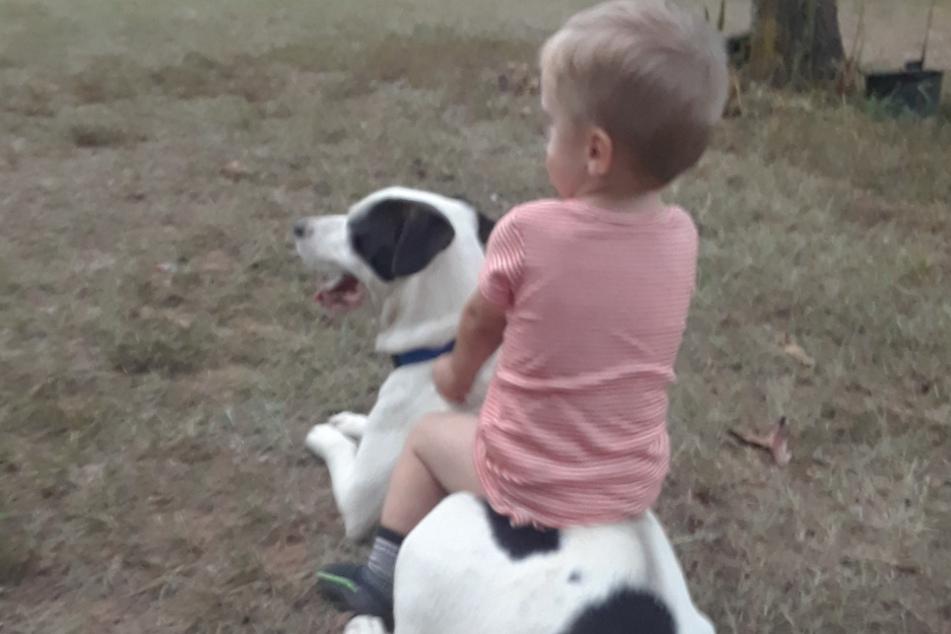 Clide was this little boy's best friend.