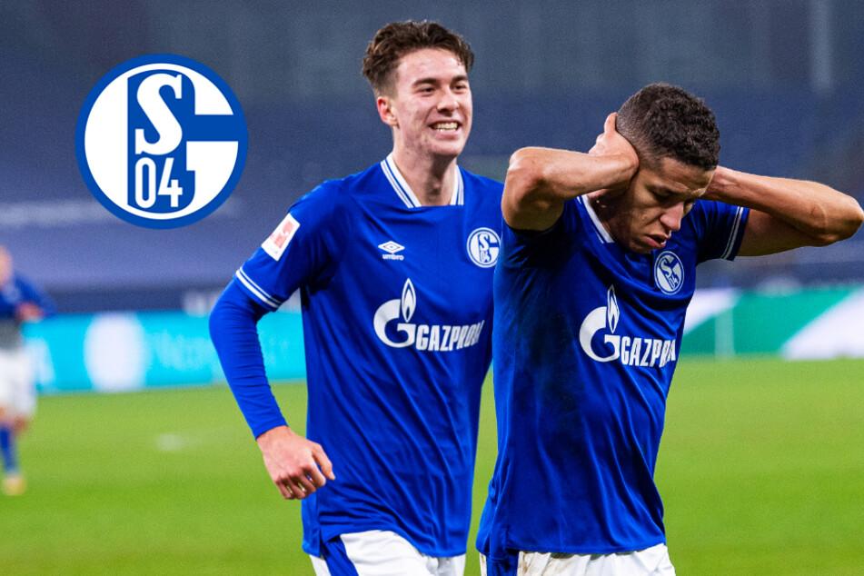 Schalke mit ersehntem Brustlöser! Sieg gegen TSG 1899 als Initialzündung?