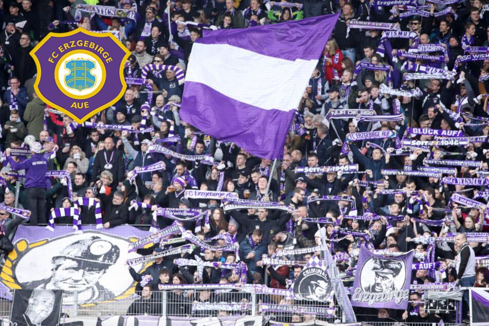 """Ab 1. September wieder Fans im Aue-Stadion? """"Das ist ein gutes Signal!"""""""