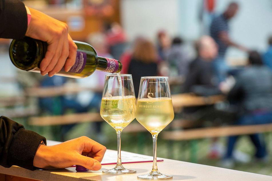 Weinfeste haben im Elbtal Tradition. Waren sie diesmal auch eine Virenschleuder?
