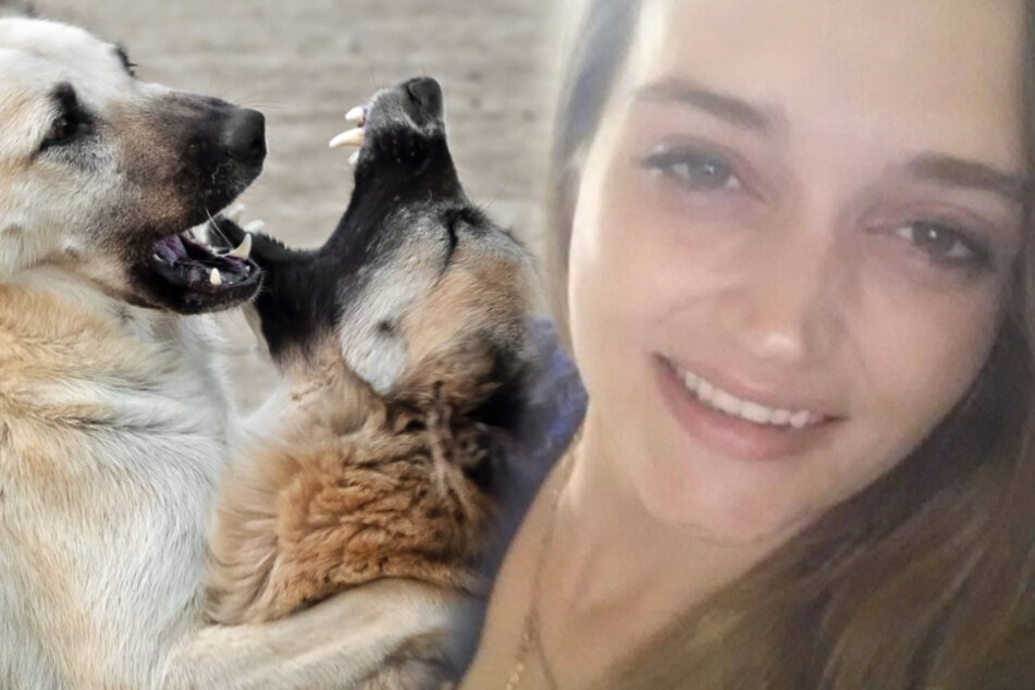 Alabama mother mauled to death by roaming pack of dogs