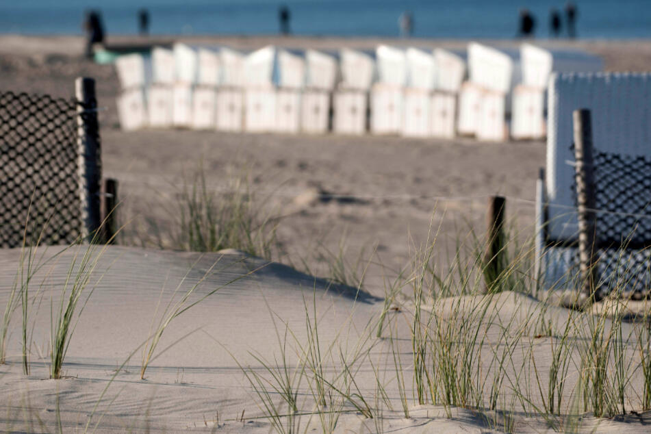 Vielleicht hilft den Dresdnern ja ein Spaziergang am Strand von Warnemünde, um im nahen Ostseestadion zu bestehen.