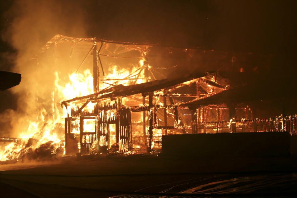 Brand auf Bauernhof: Verletzt wurde bei dem Feuer niemand.