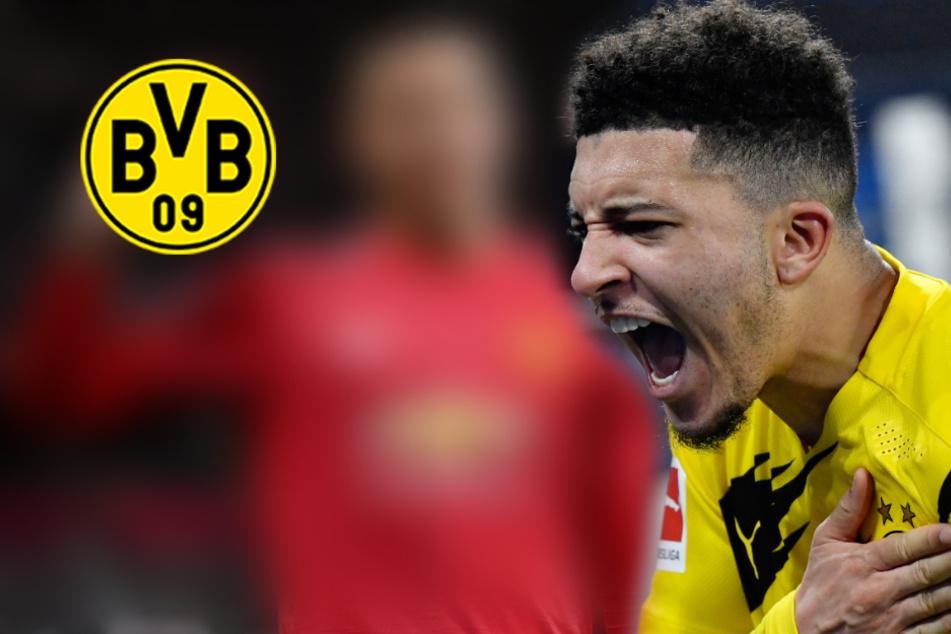 Manchester United stellt Werben um Dortmunds Sancho (vorerst) ein: Liegt es an IHM?