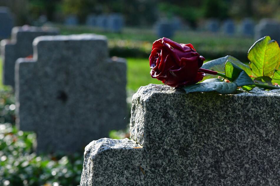 Eine Rose liegt auf einem Grabstein auf dem Friedhof in Apolda.