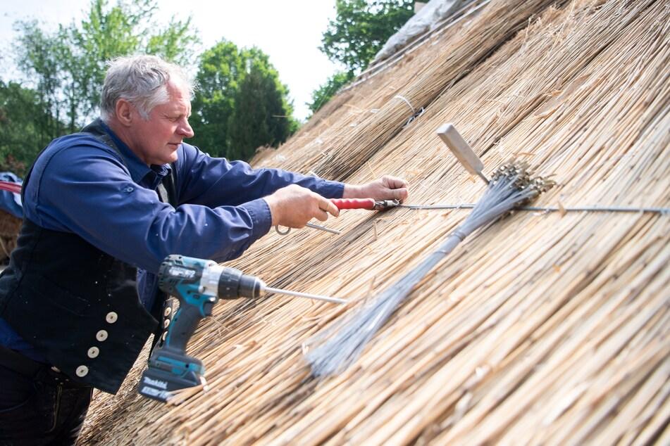 Peter Heinrich, Reetdachdeckermeister, arbeitet an einem Reetdach.