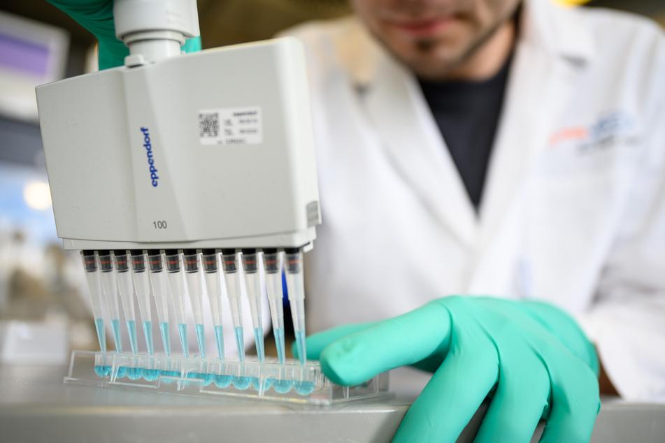 Ein Mann pipettiert in einem Labor des biopharmazeutischen Unternehmens Curevac eine blaue Flüssigkeit. Das Tübinger Pharmaunternehmen arbeitet an der Entwicklung eines Impfstoffs gegen das Coronavirus.