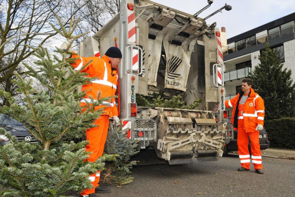 Wohin mit dem Weihnachtsbaum? So werdet Ihr ihn los!