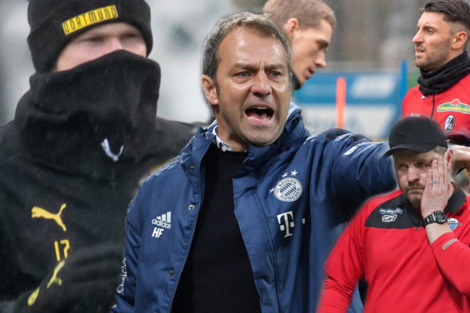 Vom FC Bayern bis Paderborn: So halten sich die Teams fit!