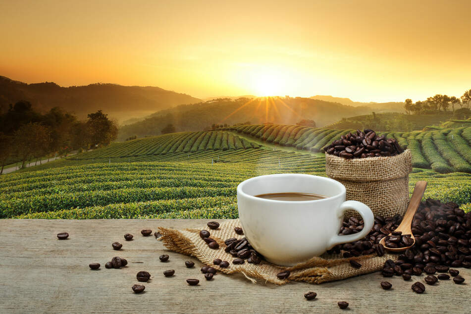 Can coffee make you live longer? Busting the myths on the cup of joe