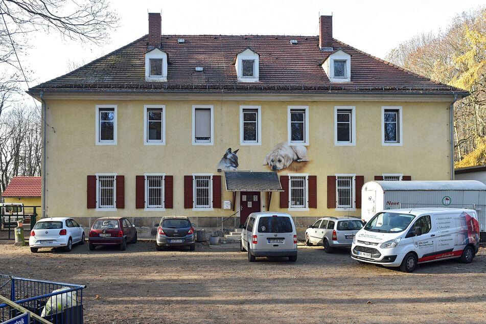 Tatort Tierheim. Hier wurde der Hund gestohlen.