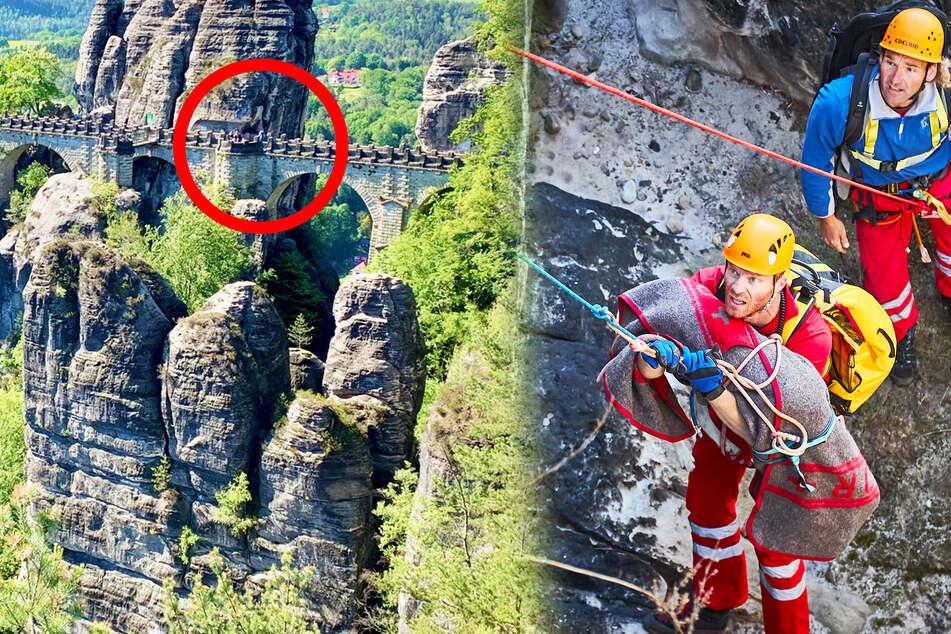 Hund springt von der Bastei in die Tiefe, doch die Bergwacht ist zur Stelle