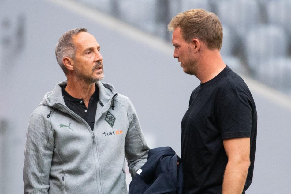 Julian Nagelsmann (34, r.) und der FC Bayern München bekommen es am 1. Spieltag der Bundesliga mit Borussia Mönchengladbach und Adi Hütter (51) zu tun.