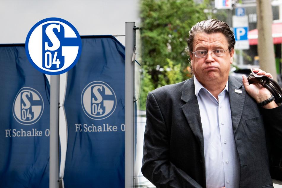 """Knappen führen AfD-Politiker Brandner vor: """"Schalke wird nie auf ihr Niveau absteigen"""""""