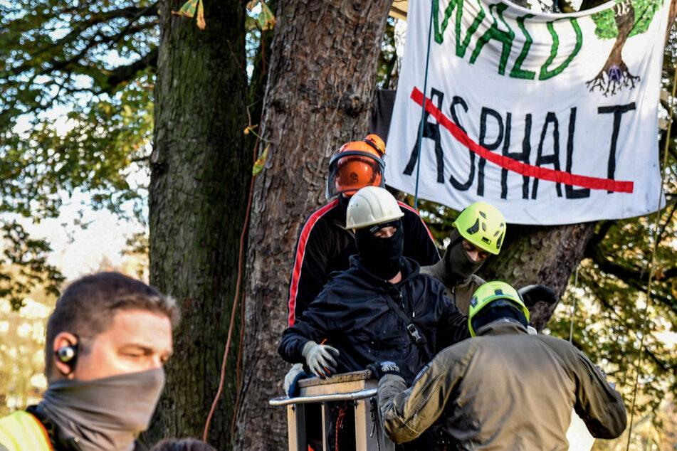 Besetzter Baum im Kölner Volksgarten geräumt
