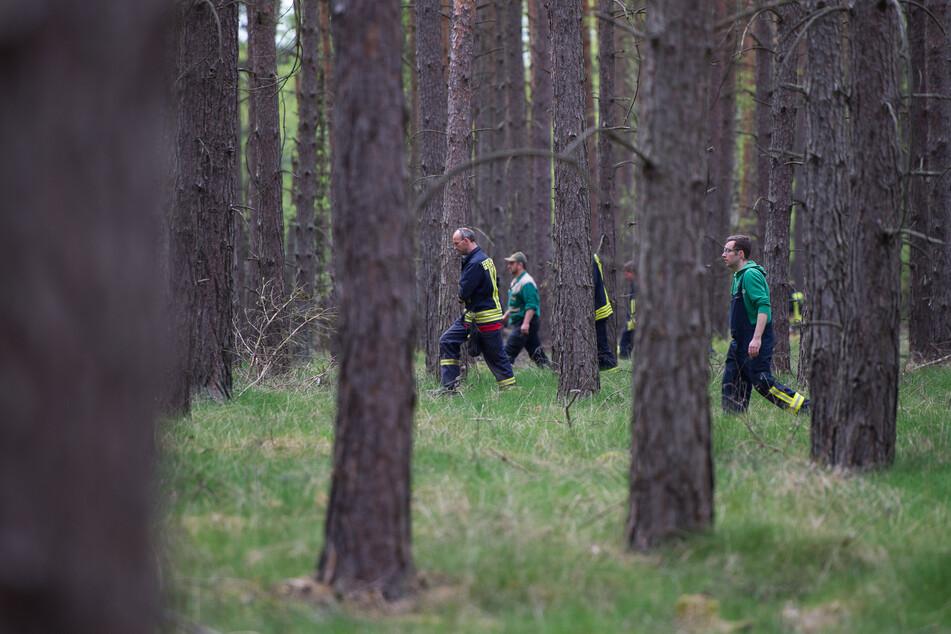 Mai 2015: Einsatzkräfte suchen in einem Waldgebiet bei Wilhelmshof nach der vermissten Inga.