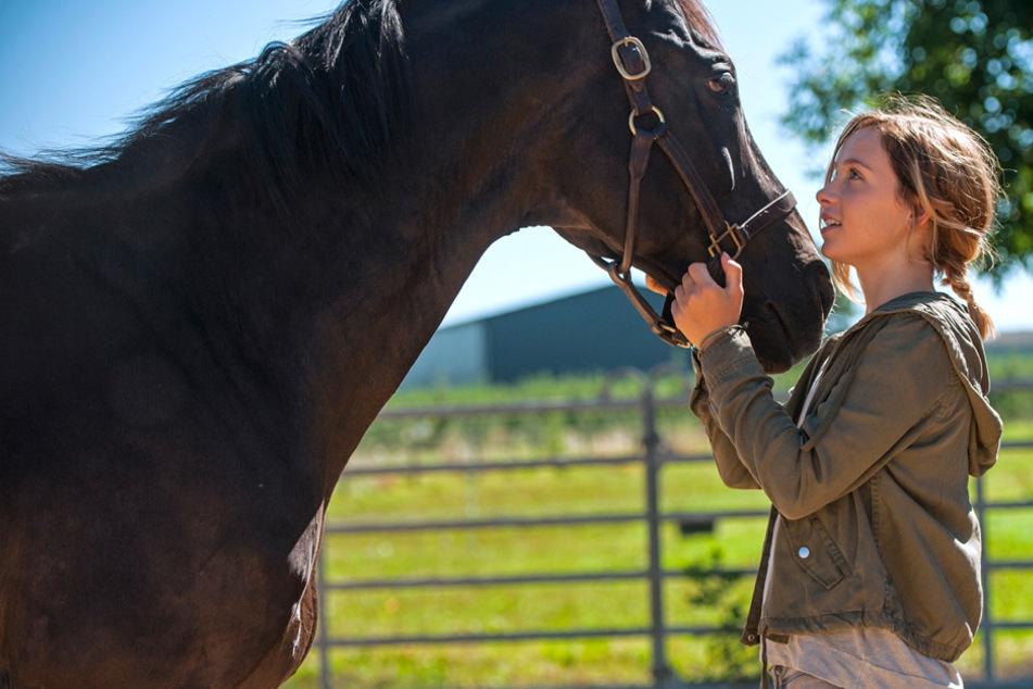 Wenn jeder Herzschlag der letzte sein könnte: ARD erzählt emotionale Geschichte