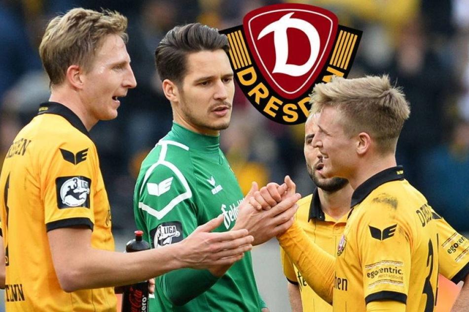 Dynamos erholen sich für Aufstiegs-Endspurt