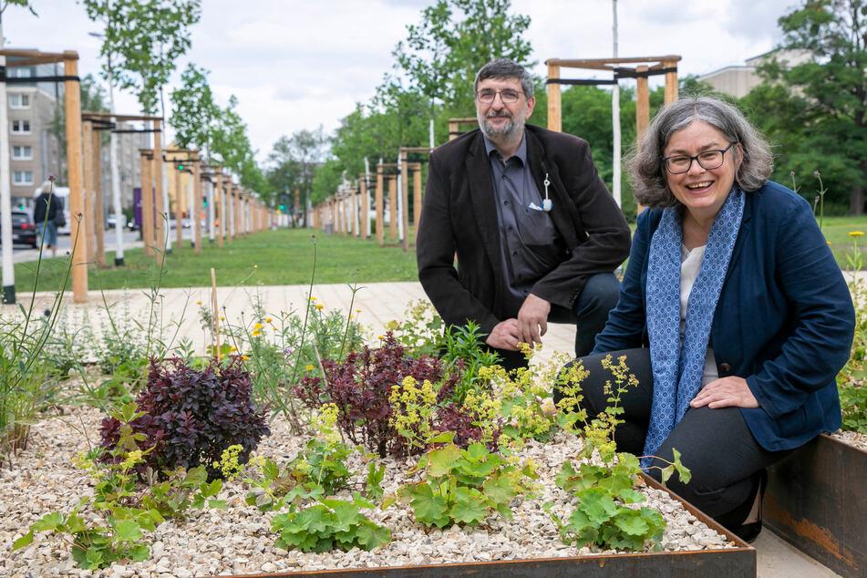 Wann immer Umweltbürgermeisterin Eva Jähnigen (55) und Jörg Lange (56) neue Bäume pflanzen, landen die kurze Zeit später im digitalen Register der Stadt.