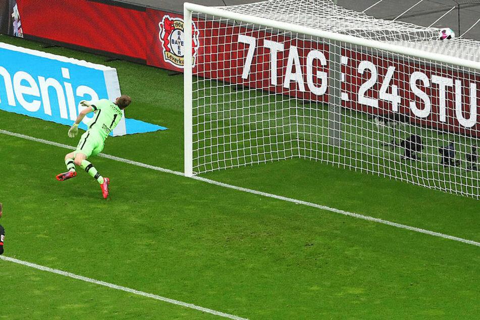 Da schlägt's hinter beziehungsweise über Leverkusen-Schlussmann Lukas Hradecky ein.
