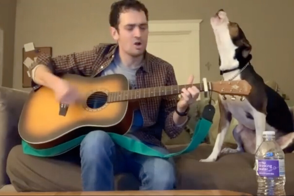 Dog sings along to country classic in amazing duet