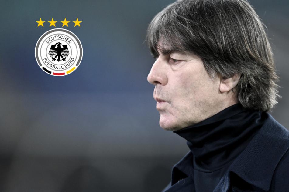 DFB will bis 4. Dezember Antworten: Wackelt Löws Stuhl?