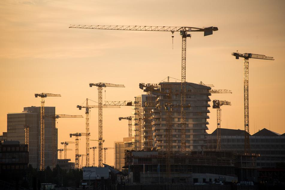 Die Sonne leuchtet am Morgen in der Hamburger HafenCity die Gebäude und Baukräne an.
