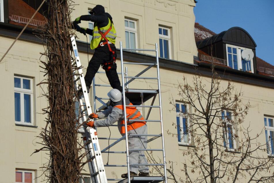 Mitarbeiter eines Abrissunternehmens rückten am gestrigen Sonntagmorgen in Taucha an...