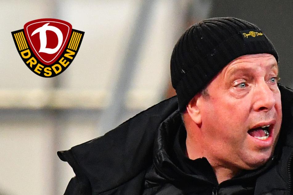 """Dynamo muss dieses Duo ausschalten! Kauczinski: """"Haben wir auf dem Schirm"""""""