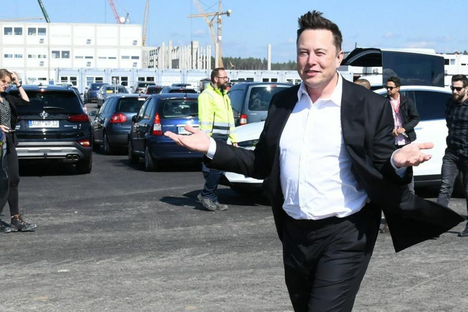 Tesla-Boss Elon Musk wirbt auf Deutsch um Mitarbeiter für Autofabrik