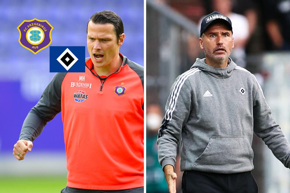 HSV zu Gast beim Schlusslicht FC Erzgebirge Aue: Alle wichtigen Infos zur Partie