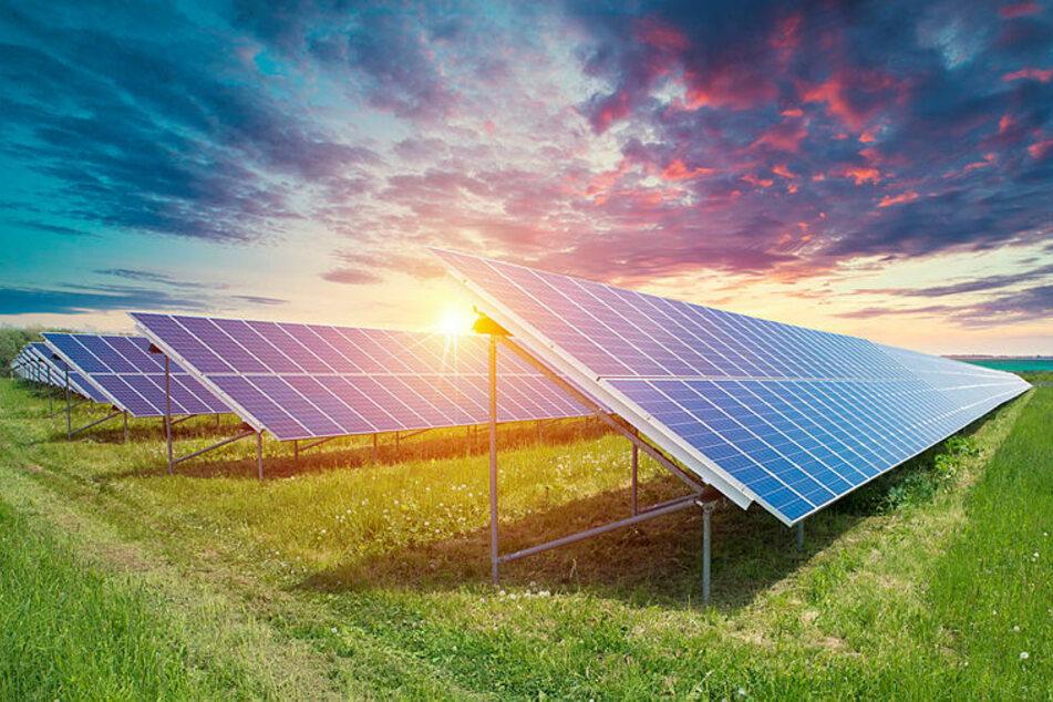 Ein Schock für die Anwohner: Auf einer Fläche von 60 Hektar mehr als 75.000 Solarmodule aufgestellt werden. (Symbolbild)