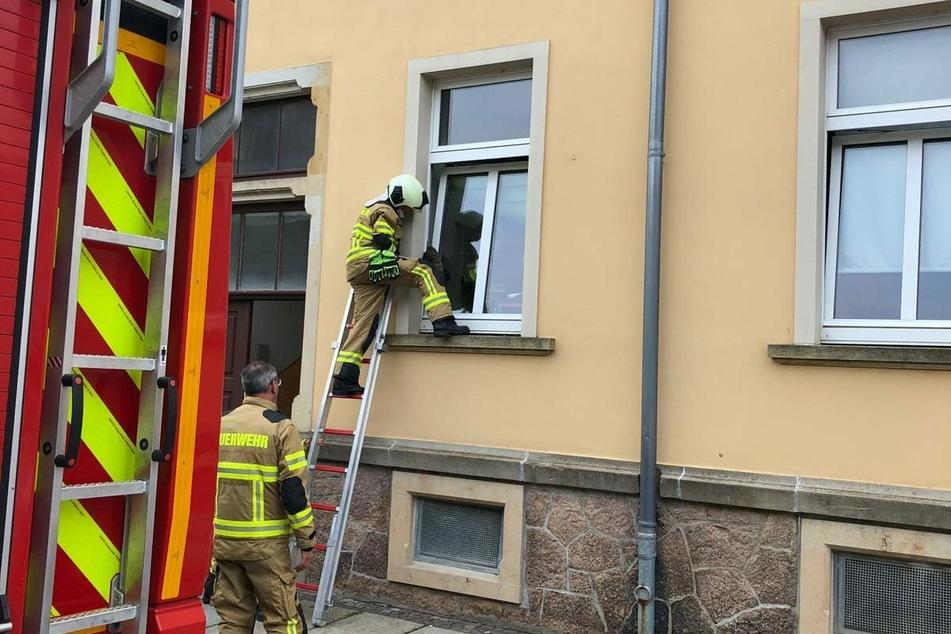 Mithilfe einer Leiter und Schutzhandschuhen konnten zwei Kameraden die gefangene Katze befreien.
