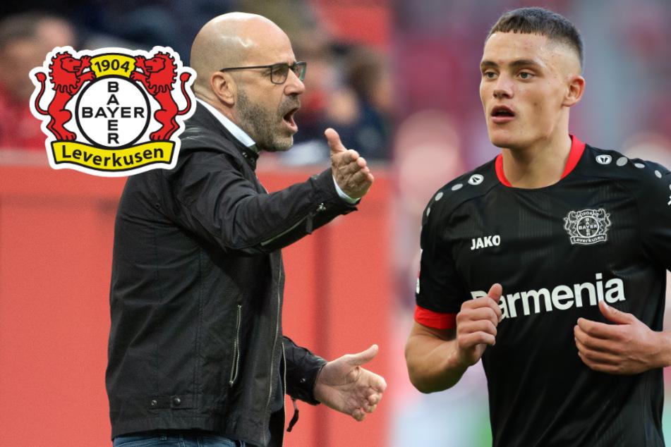 Leverkusen im Verletzungs-Pech, aber Bosz hofft auf Siegesserie
