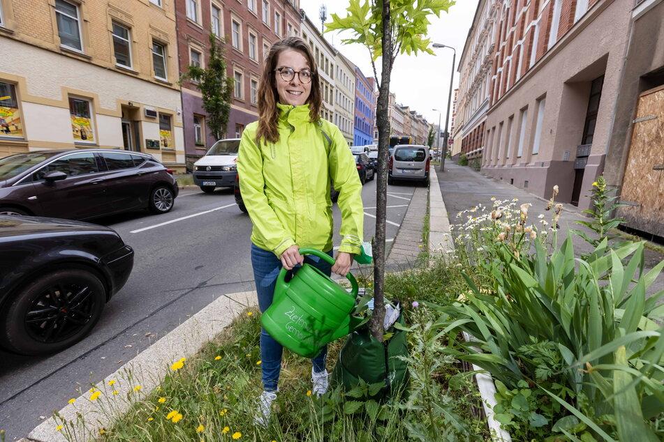 Hege und Pflege: 1000 sterbenden Bäumen stehen 26 Baumpaten entgegen. Eine davon ist Karola Köpferl.