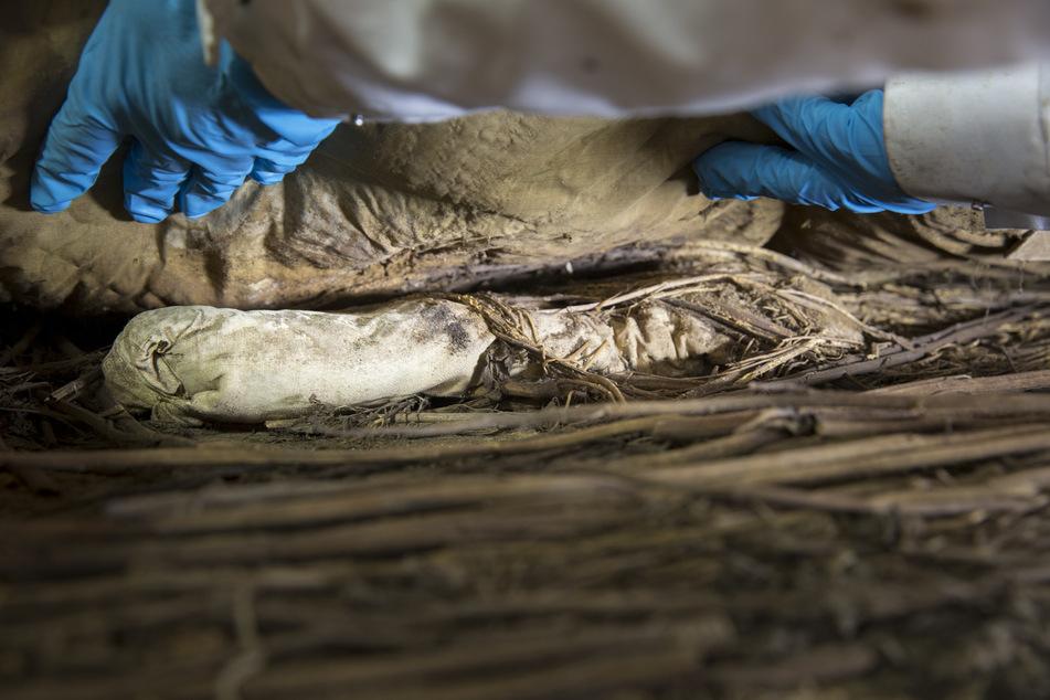 Das Bild zeigt das Bündel, das zu den Füßen von Peder Winstrup in seinem Sarg gefunden wurde.