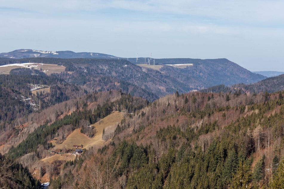 Schwarzwald pur: Blick auf Berge bei St. Märgen.