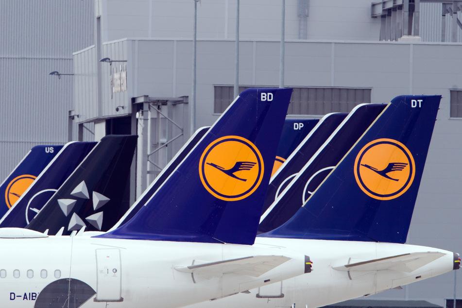Flugzeuge der Fluggesellschaft Lufthansa stehen am Rand des Rollfeldes nebeneinander.