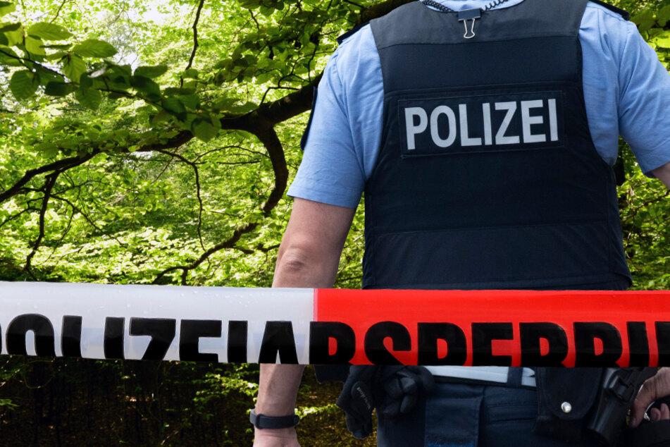 Das Flugzeug stürzte in ein Waldstück bei Hessisch Lichtenau (Symbolbild).