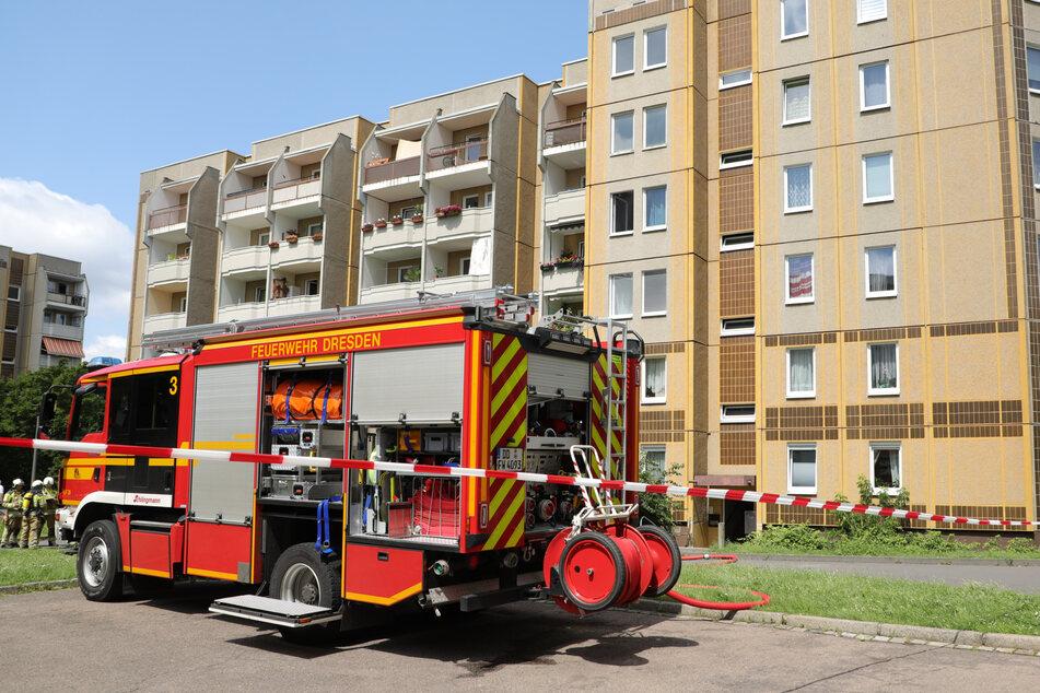 Laut der Dresdner Feuerwehr gibt es bereits erste Erfolge bei dem Einsatz zu vermelden.