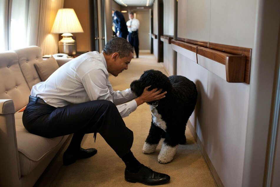 Barack Obama mourns the loss of his beloved dog Bo