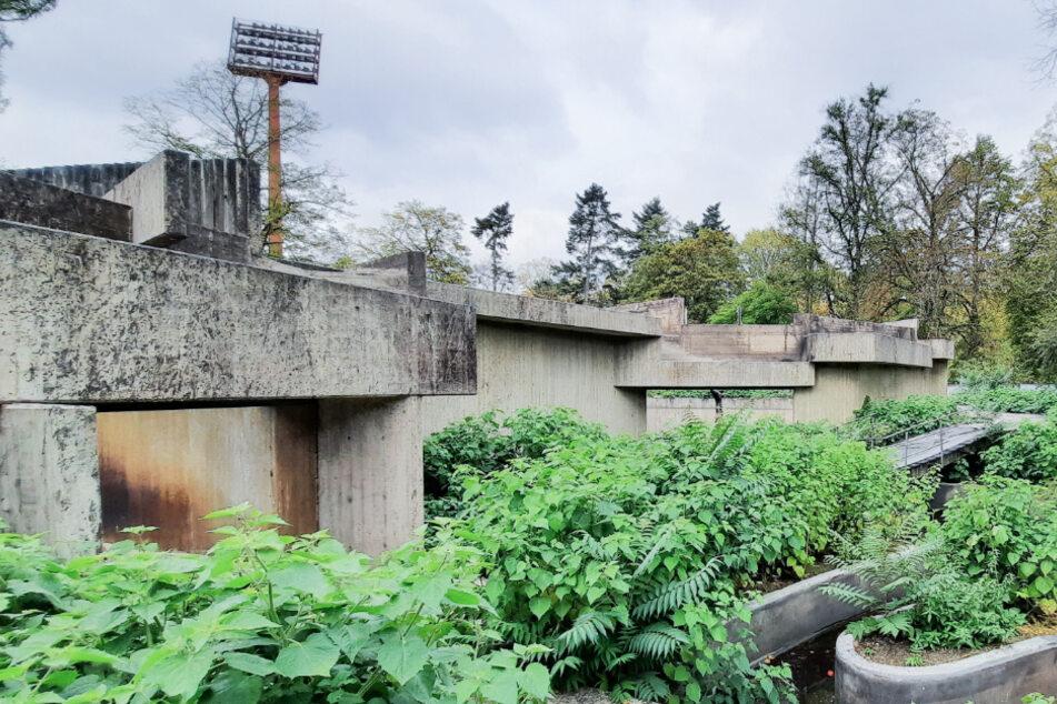 Nach verheerendem Brand: Krefelder Affenhaus-Ruine wird endgültig abgerissen