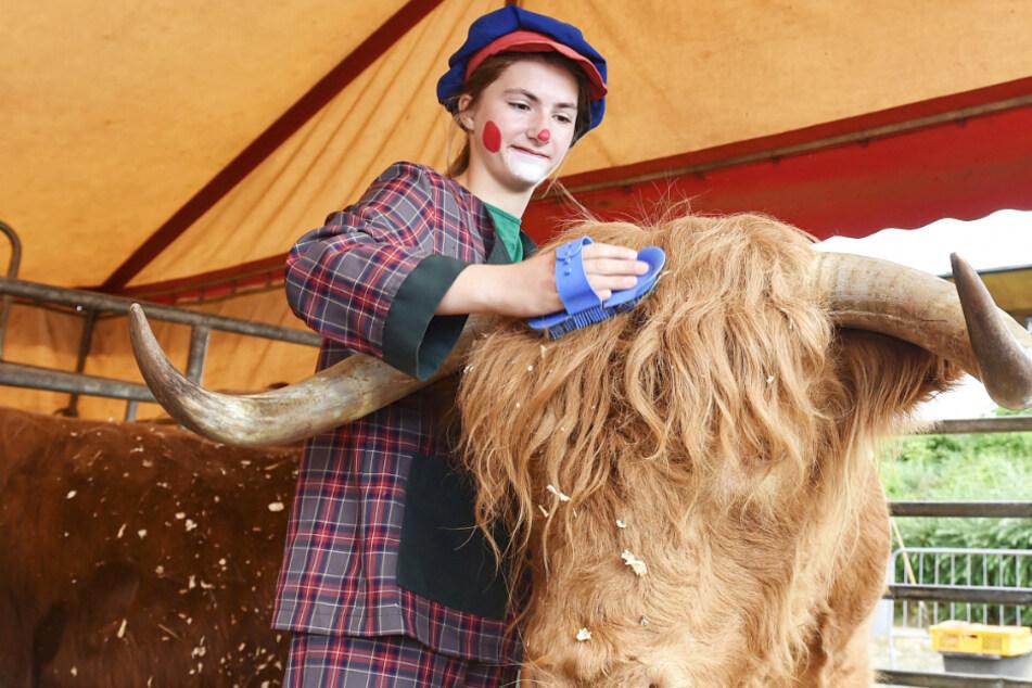 Monatelanger Corona-Nothalt: Zirkus endlich wieder auf Tour
